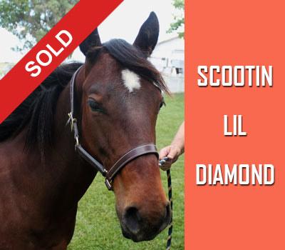 Scootin Lil Diamond