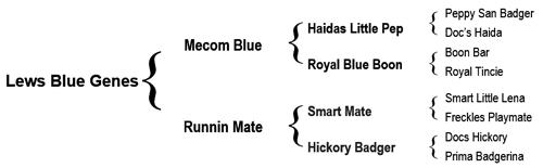 Lews Blue Genes